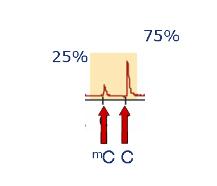 EpigenDx Bisulfite Pyrosequencing