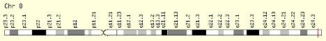 NAPRT_location-Chromosome 8