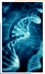 MGMT Methylation helix image to section